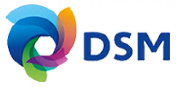 DSM INDIA